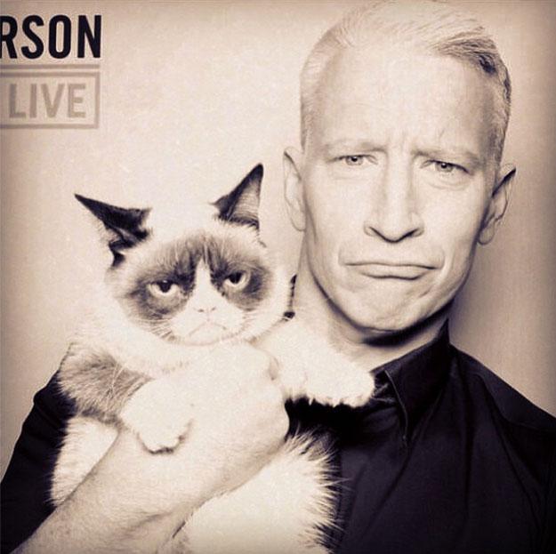 Anderson-Cooper-Grumpy-Cat