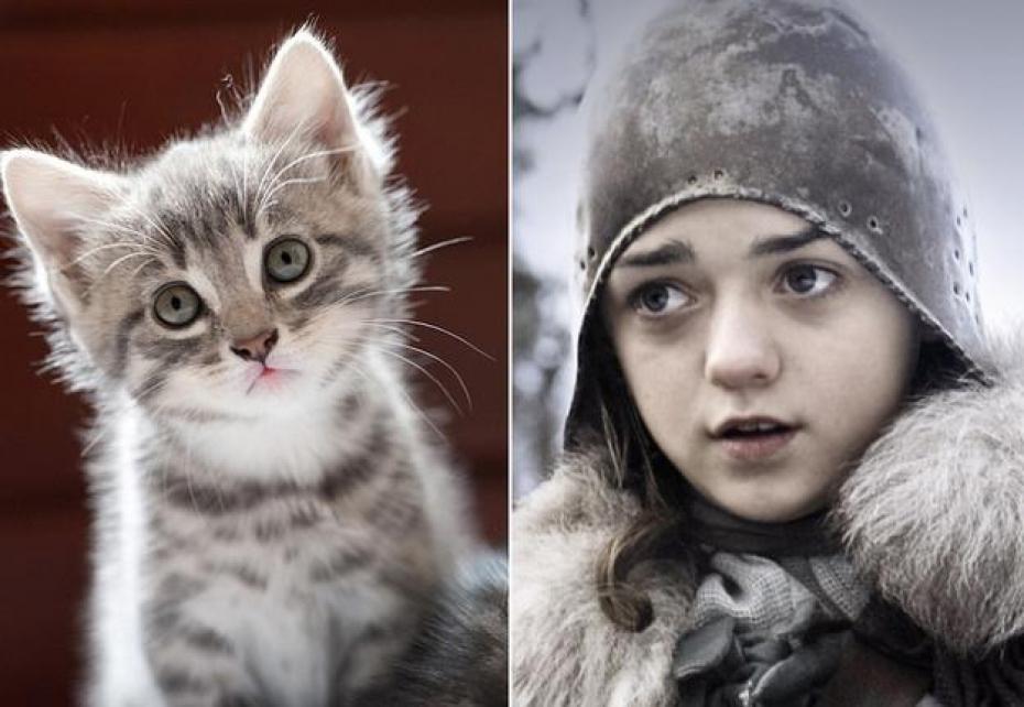 Arya-Game-of-Thrones.jpg