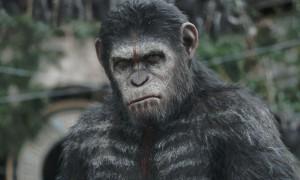 La planète des singes2