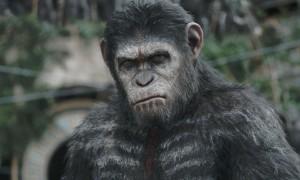 La Planète des singes-L'Affrontement3