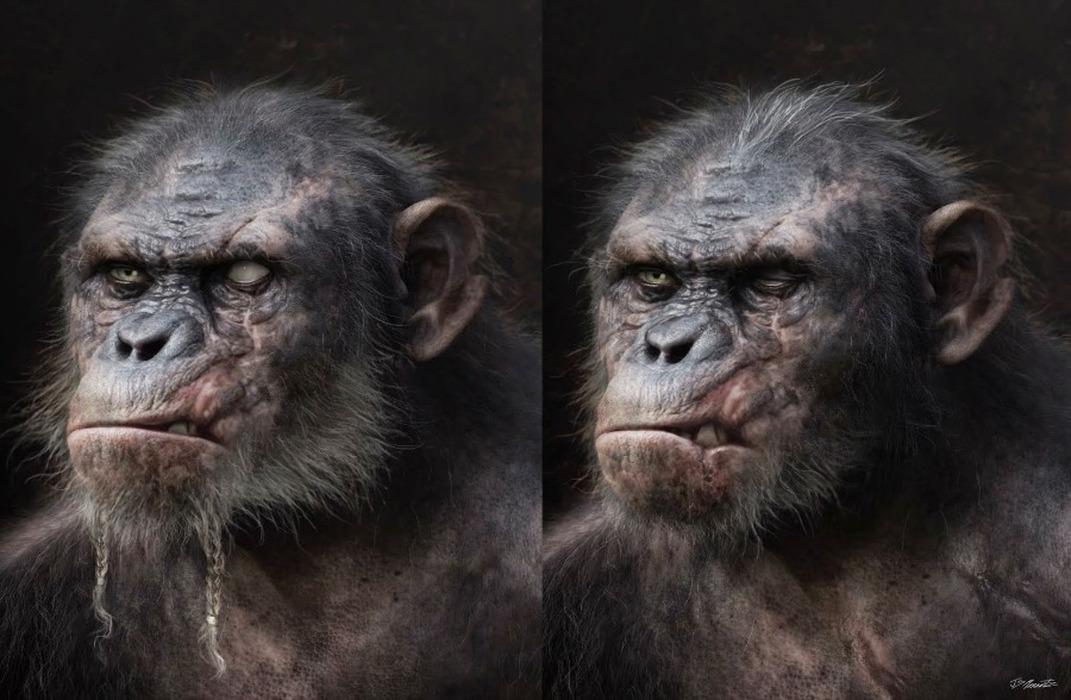 La planète des singes-Concept Art4