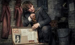 Animaux fantastiques - Les crimes de Grindelwald 3