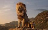 Le roi lion2